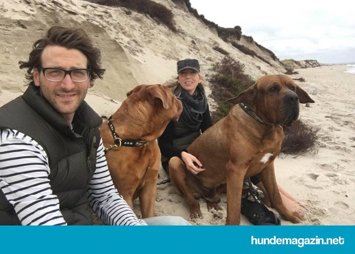 Hund kostet Geld und bringt Lebensqualität
