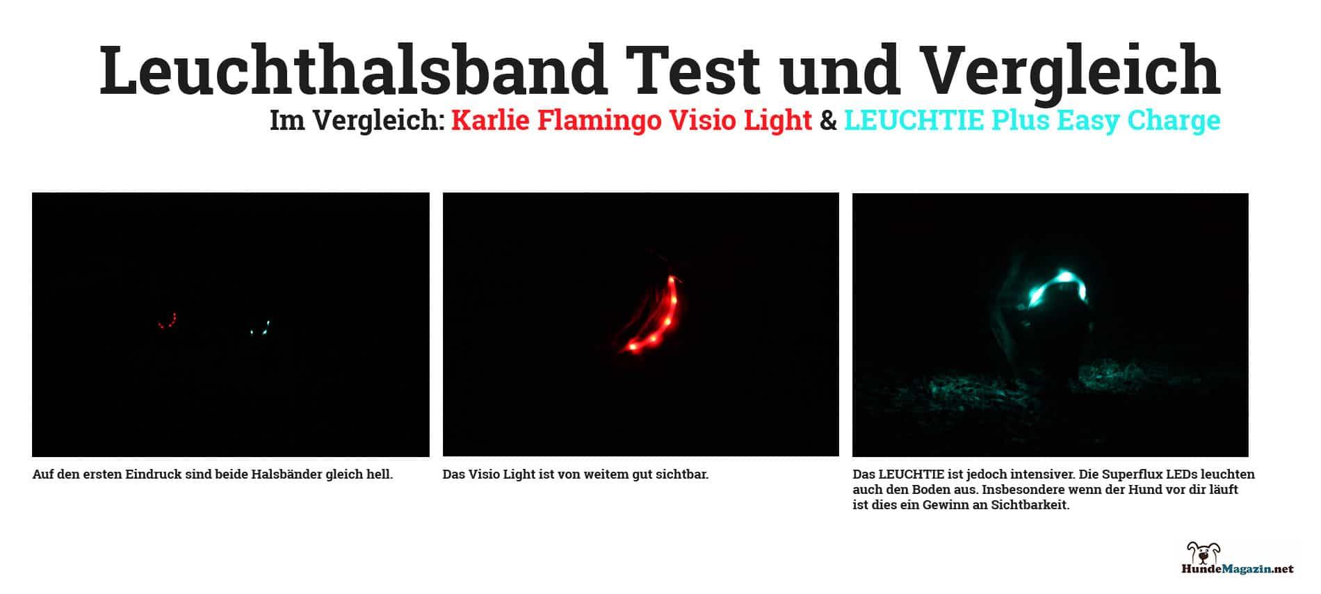 leuchthalbsband-test