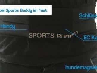 Laufgürtel Sports Buddy Test
