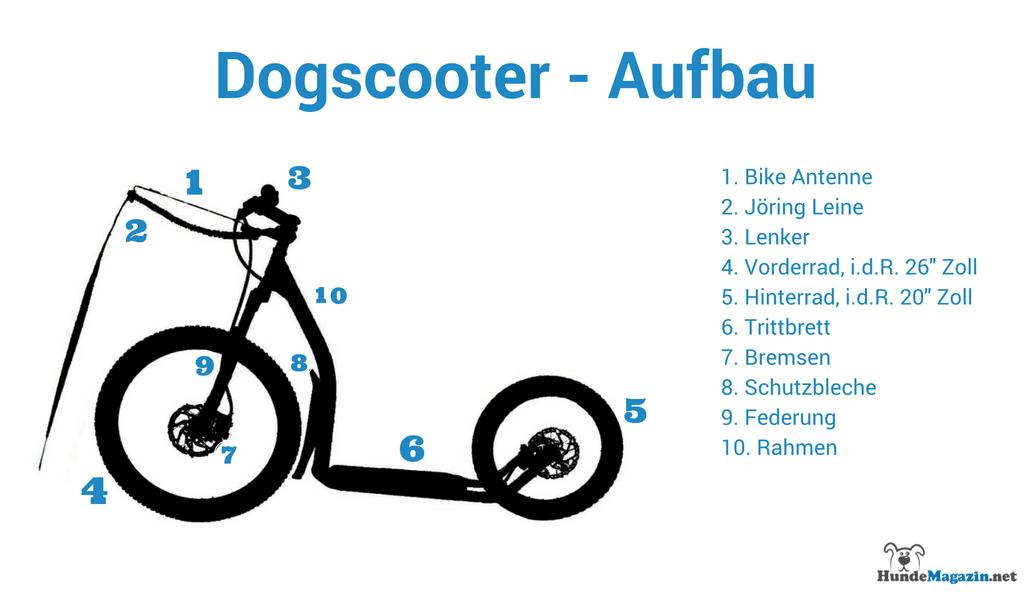 Dogscooter Infografik - Der Aufbau und die Komponenten