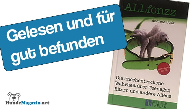 rezension-allfonzz-teenager-eltern-aliens