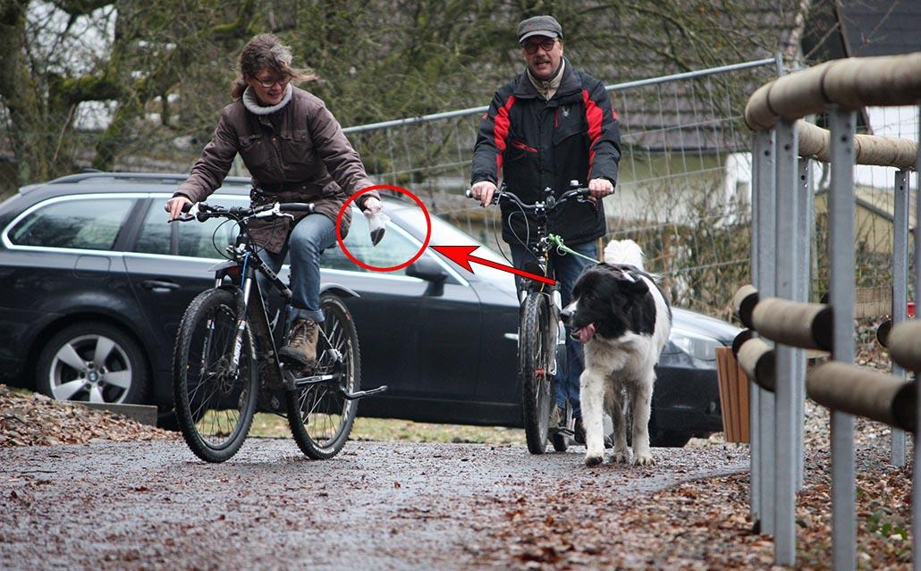 dogscooter leckerchen uebung