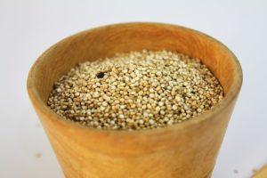 Amarant für Getreidefreies hundefutter