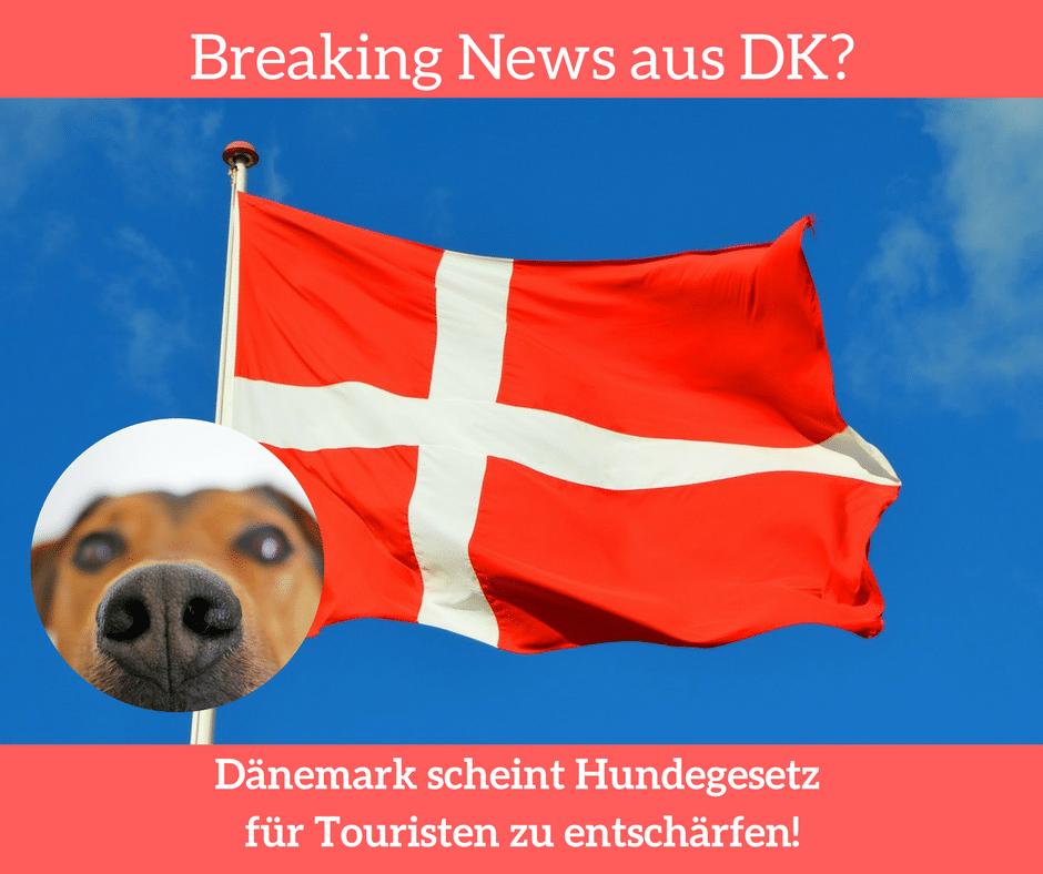Hundegesetz Dänemark