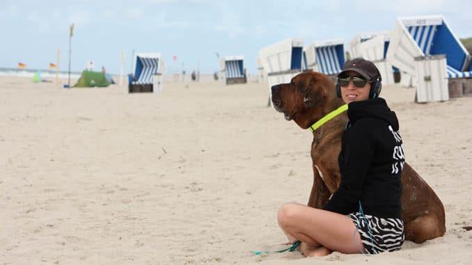 hundeleine biothane strand