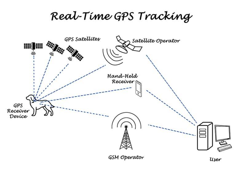 GPS Sender für Hunde - Infografik Satellit