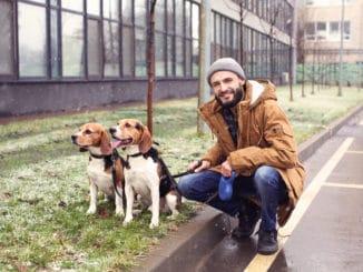 Städtereise Mann mit eigenen Hunden